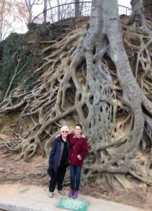 Two women standing in front of roots of a Beech tree.