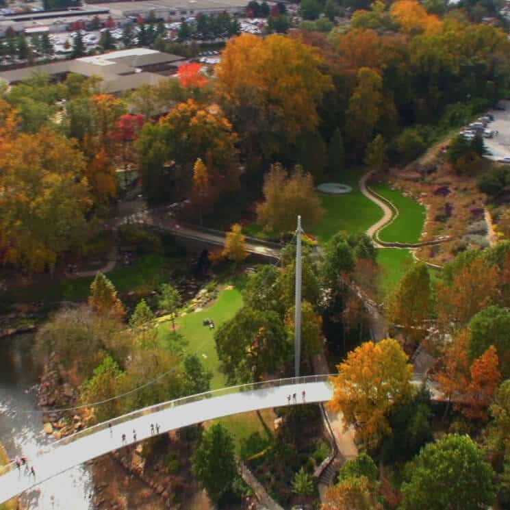 High overhead view of fall foilage in Greenville, South Carolina